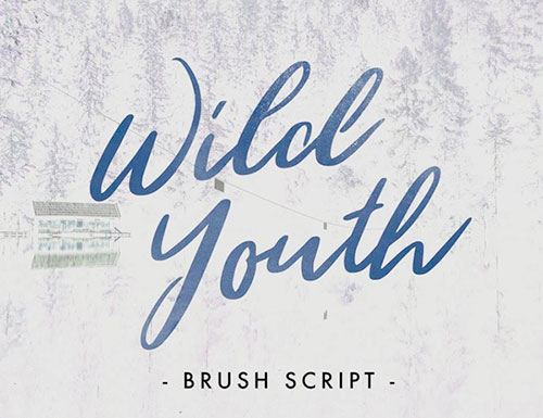 Wild Youth Brush Script Font